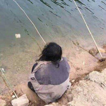 为娱不为渔快乐喂鱼