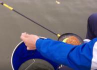 《户外老曹》钓鱼时一只手就可以取下鱼 用这个你也能做到