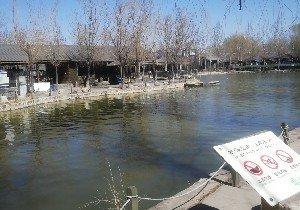 杨柳青庄园鱼场