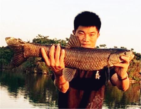 深坑钓巨物,看看水更暴力 老鬼饵料钓罗非鱼
