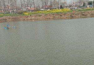 桂鱼垂钓园