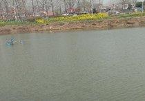 桂鱼垂钓园天气预报