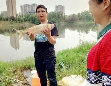 濕地公園鳳凰湖,野釣鰱鳙真解毒!