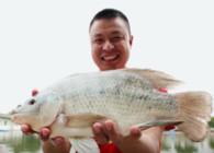 《二炮手時間》第09期 江西興國紅鯉魚
