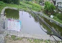 黑鱼泉生态园
