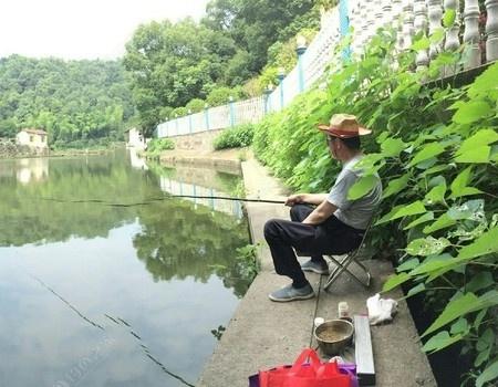 周末魚塘小釣 龍王恨餌料釣鳊魚