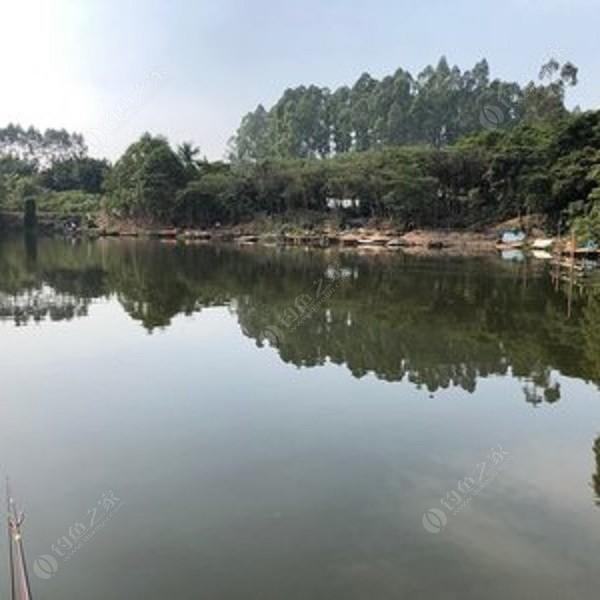 联众钓鱼场