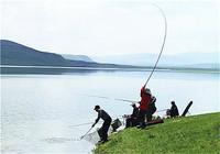 水库钓鱼乐虎国际登录之分析鱼的习性(一)