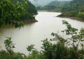 青树河水库