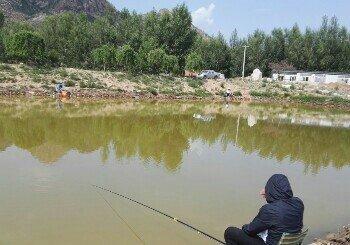 钓鱼台坝下垂钓园
