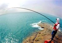 资深钓鱼人分享海矶钓选位与鱼饵使用技巧