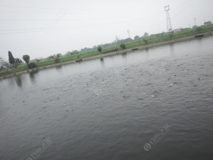 鄂州市鑫鑫家庭农场