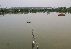 雁鸣湖特色农庄钓鱼