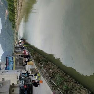 杨岙垂钓中心