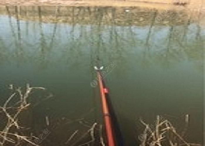 西高庄鱼塘