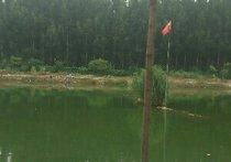 莲花山农家乐垂钓园天气预报