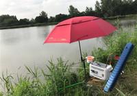 夏季如何釣魚,有哪些最常用技巧?