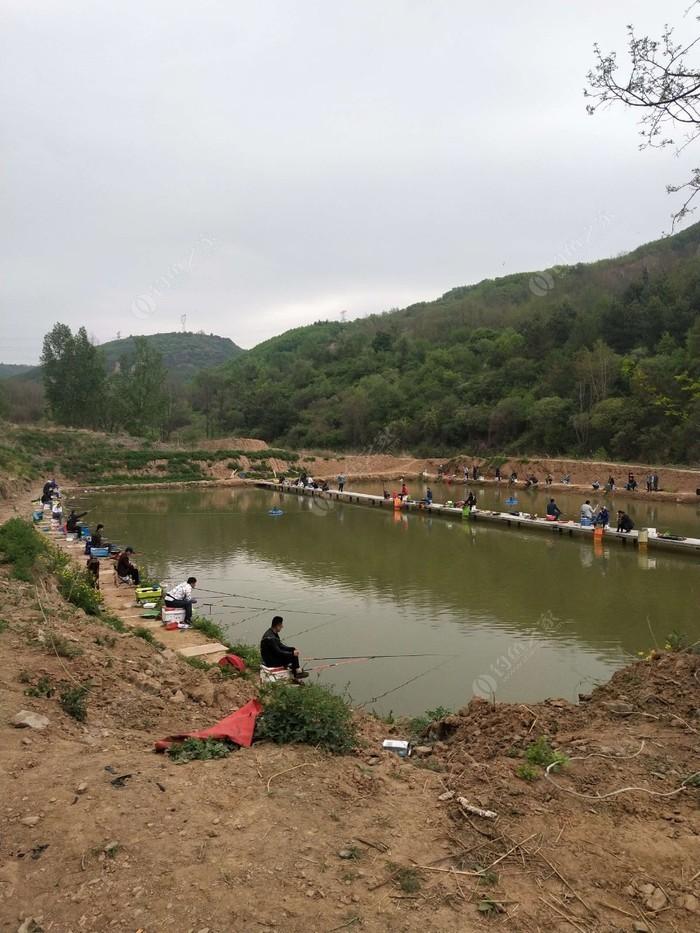 富县张八沟鱼池