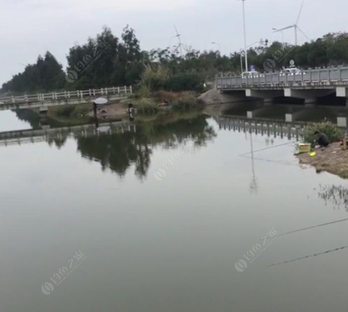 楚楼水库大物钓场