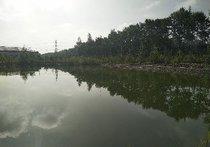 总寨高源鱼塘