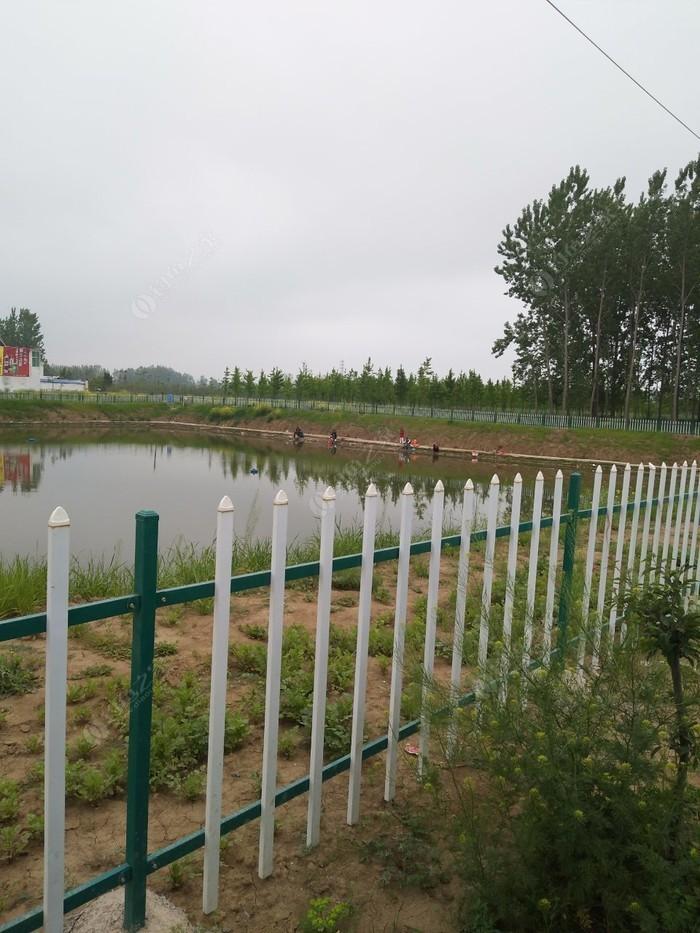 绿野垂钓中心
