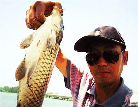 7.10汉江钓鲤鱼