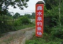 鑫水泉钓鱼场
