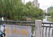 梧桐桥段景观河