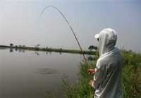 黑鱼手竿作钓选饵与线组搭配技巧