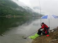 江河钓鱼应对流水环境之做窝